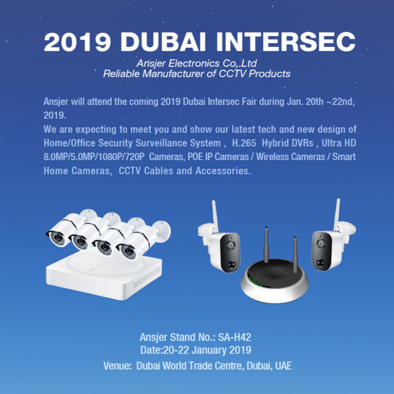 2019 Dubai Intersec